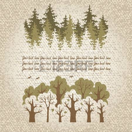 12,487 Coniferous Stock Vector Illustration And Royalty Free.