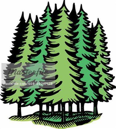 Coniferous Forest Plants Clip Art.