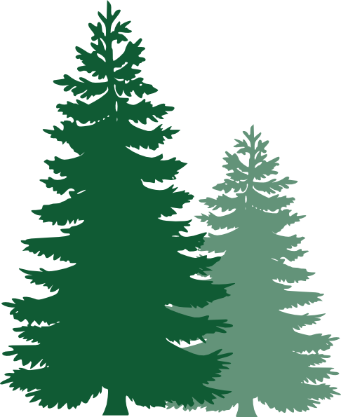 Coniferous Trees Clipart.