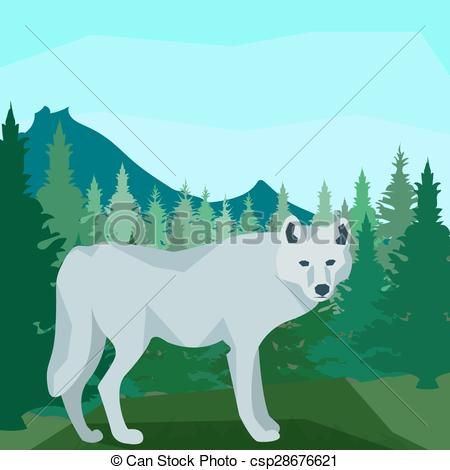 Vector Illustration of Wolf in the coniferous forest, animals and.