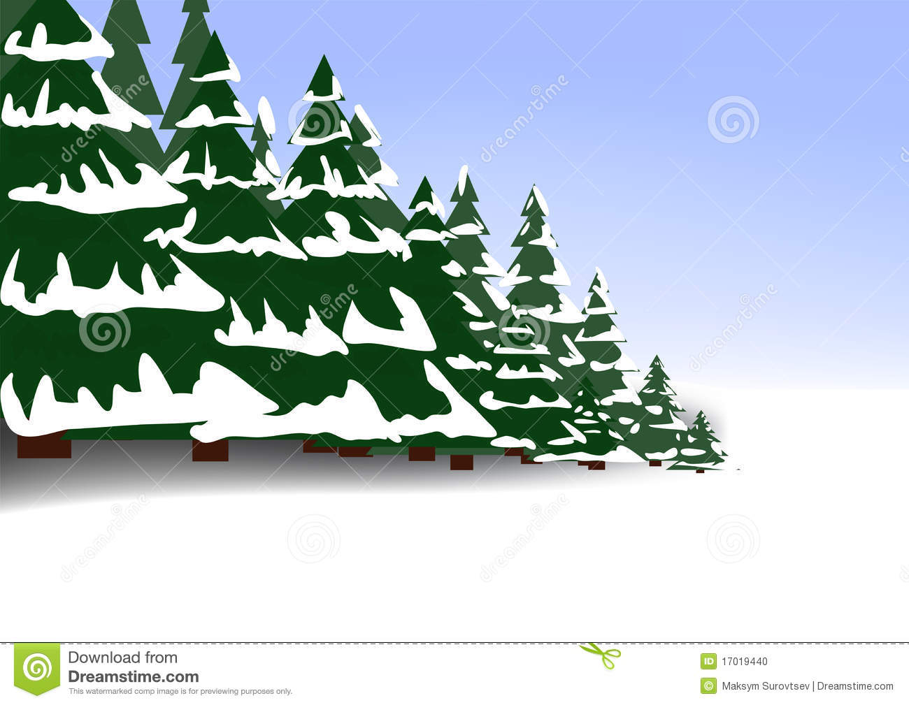 Winter Coniferous Forest Stock Photo.