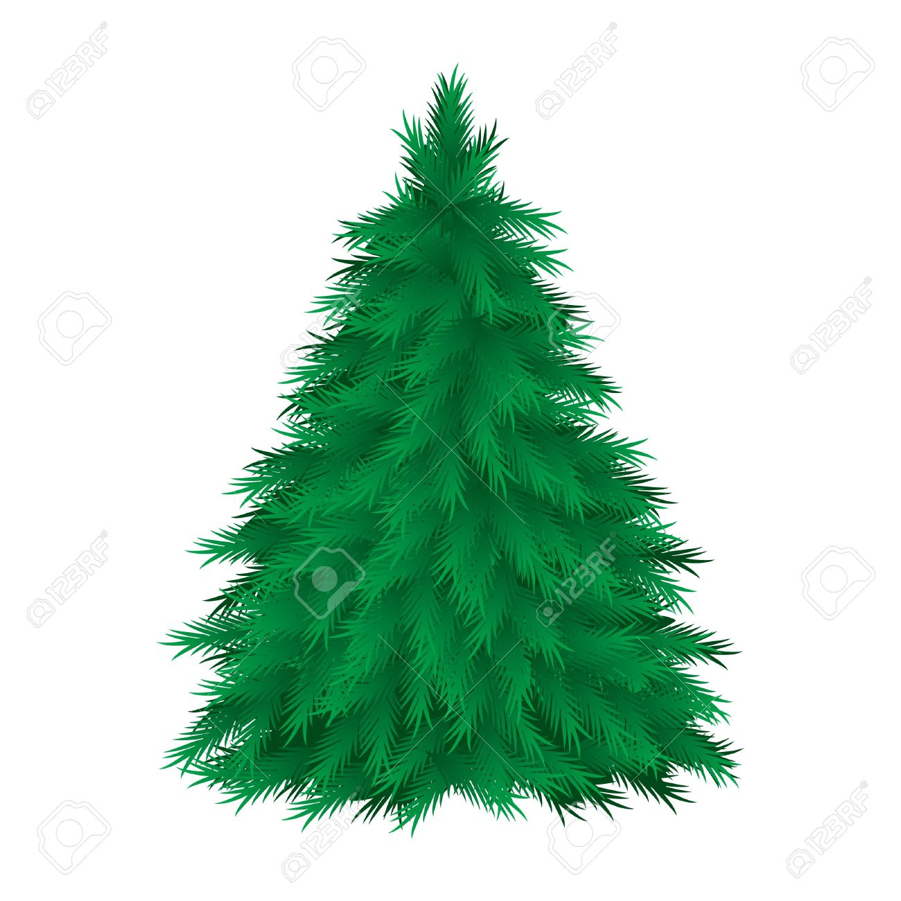 Coniferous Tree Isolated. Vector Illustration On White Background.