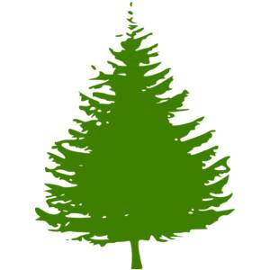 Pine Tree Clipart Clip Art Images