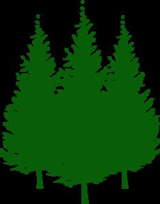 Pine Tree Clipart.