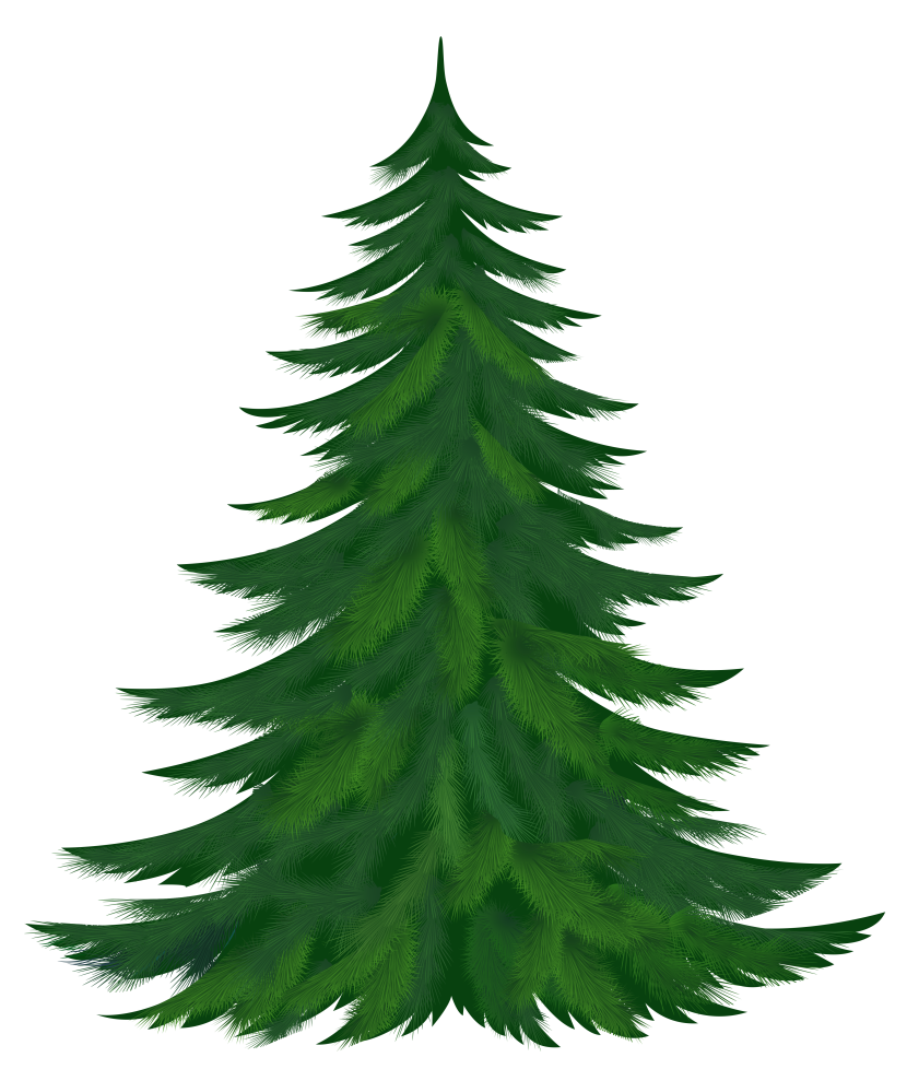 Pine Tree Clip Art & Pine Tree Clip Art Clip Art Images.
