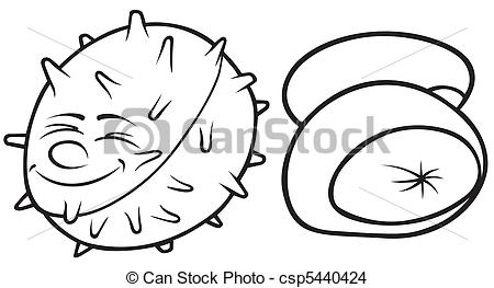EPS Vector of Conkers.