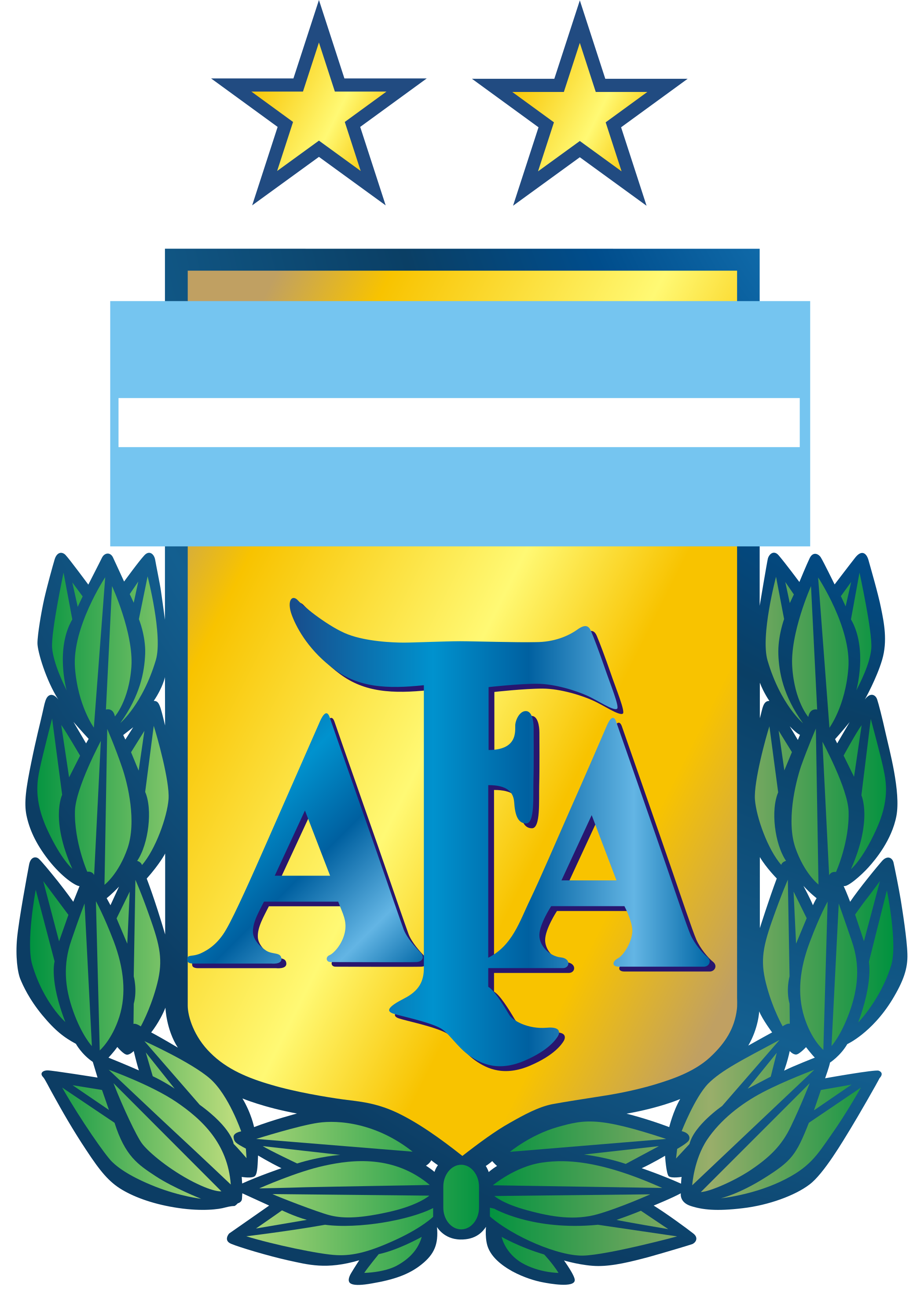 Argentina national team.