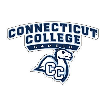 Amazon.com : Connecticut College Medium Magnet \'Primary Mark.