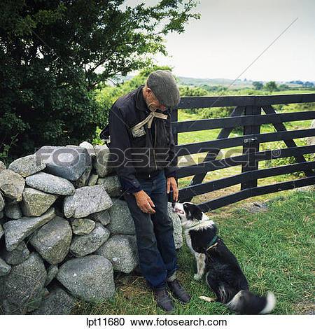 Stock Photography of SHEPHERD WITH HIS BORDER COLLIE SHEEPDOG.
