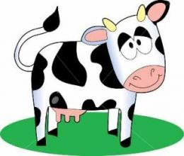 1000+ ideas about Cow Facts on Pinterest.
