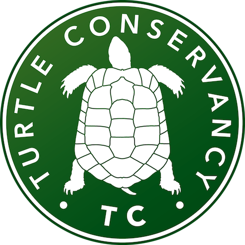 Turtle Conservancy — CITES Meeting: Turtle Conservationists Urge.