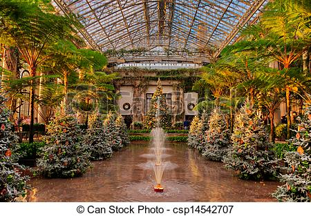 Stock Photography of Christmas trees inside the Conservatory at.