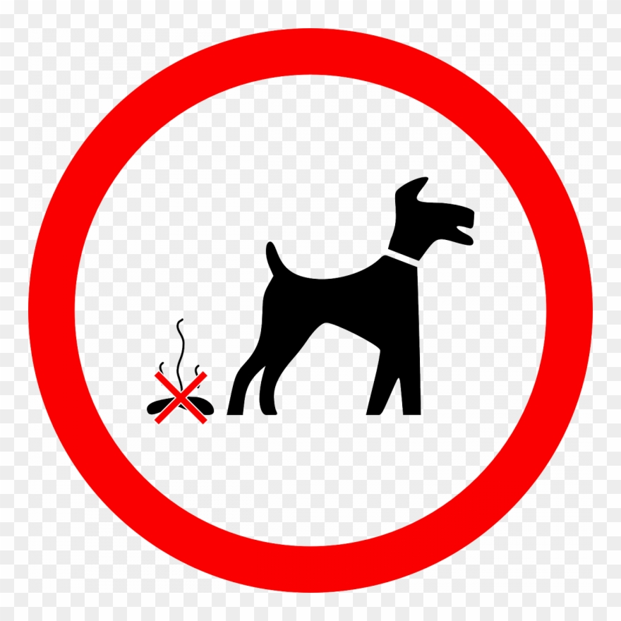 Be Considerate Of Others And Pick Up After Your Dog.