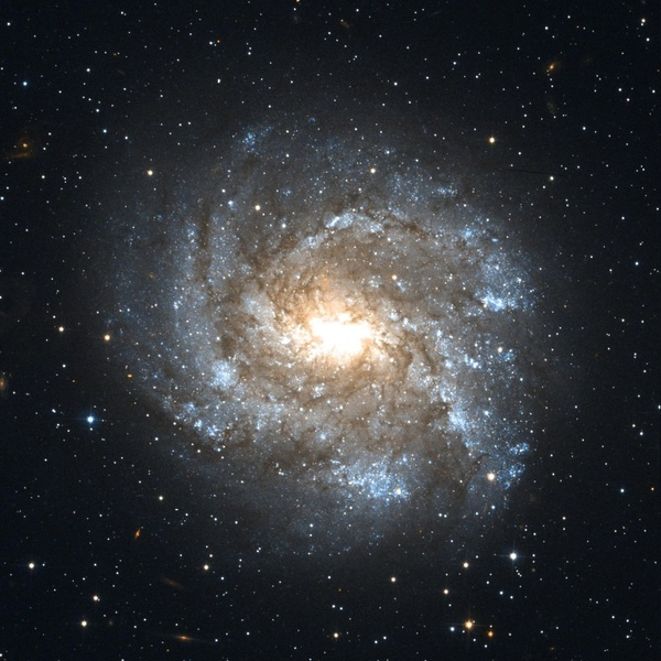 Ngc 2082 barred spiral galaxy constellation schwertfisch Free.