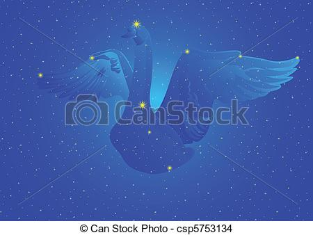 Cygnus Illustrations and Stock Art. 109 Cygnus illustration and.