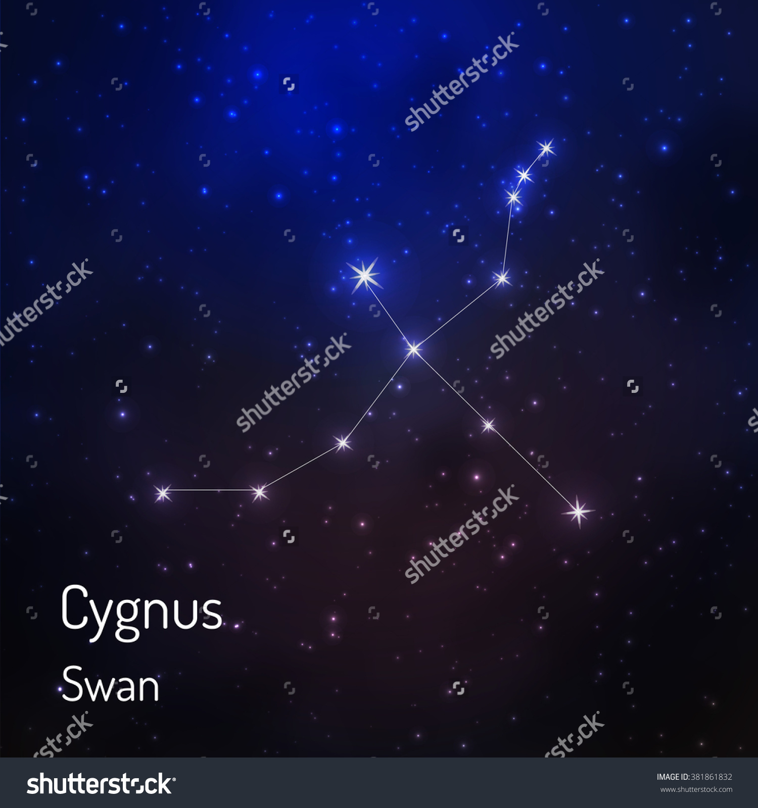 Cygnus Swan Constellation Night Starry Sky Stock Vector 381861832.