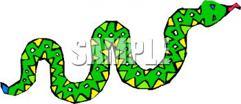 Brightly Colored Snake.