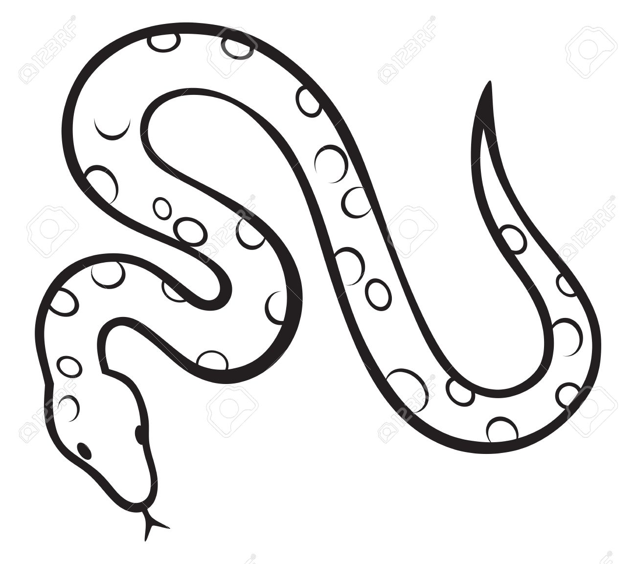 Constrictor clipart #11
