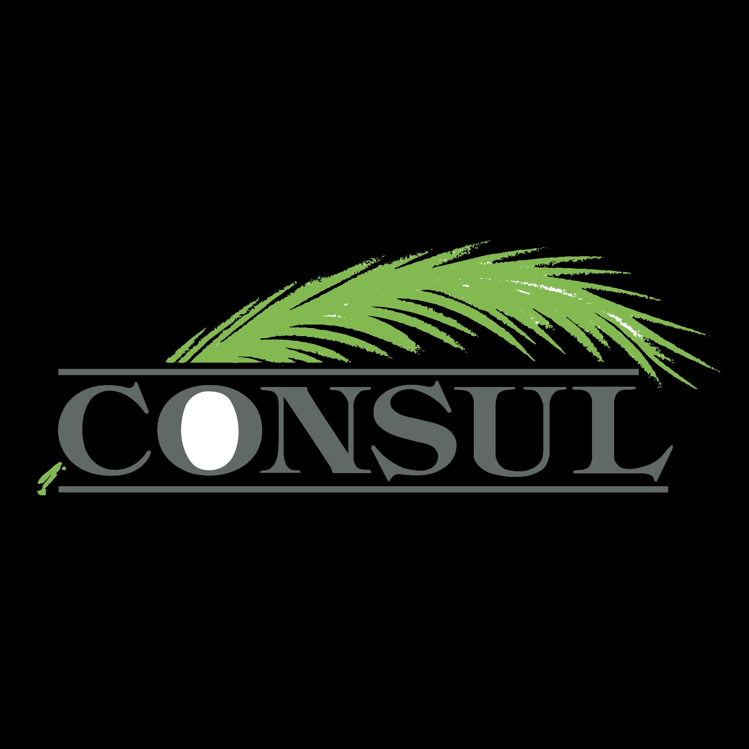 Consul Logo PNG Transparent & SVG Vector.