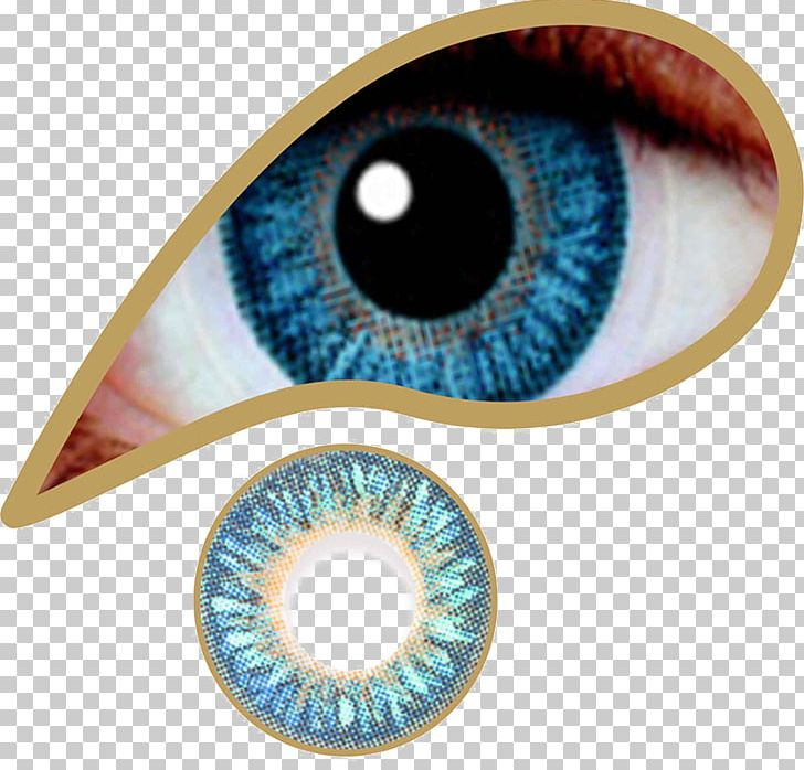 Contact Lenses Brown Circle Contact Lens Eye PNG, Clipart, Blue.