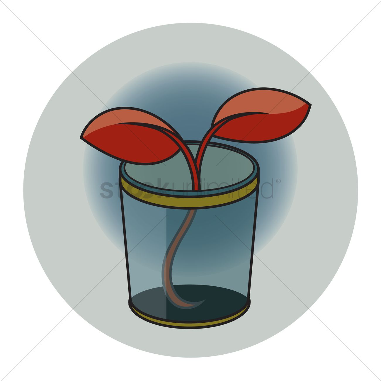 Free Plant in a container Vector Image.