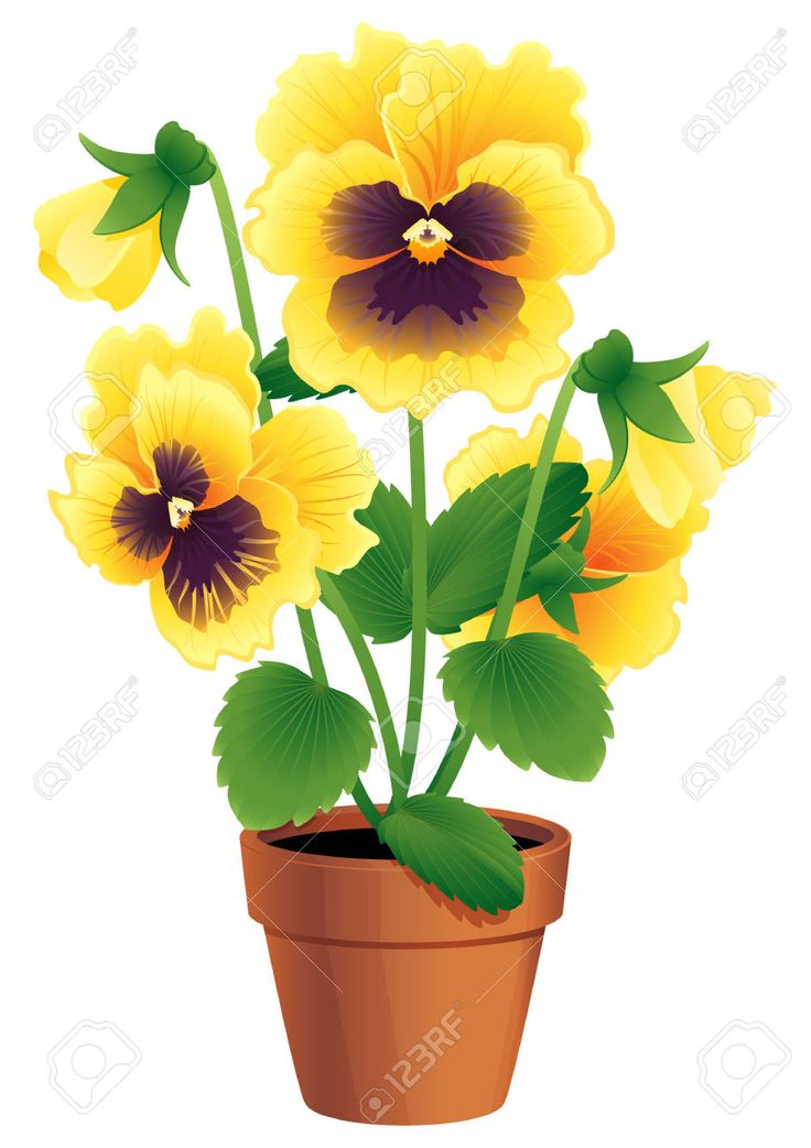 1000+ images about bloemen,planten en bomen plaatjes on Pinterest.