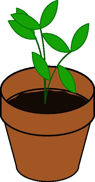 Plant pot clipart #14
