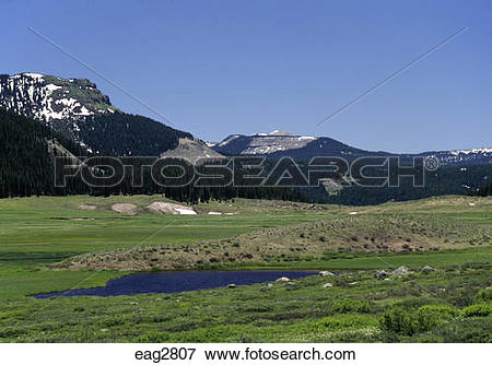 Picture of Pond in the valley at WEMINUCHE CREEK on the.