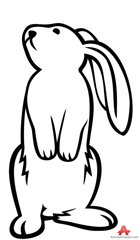 Standing Rabbit Outline Contour Drawing.