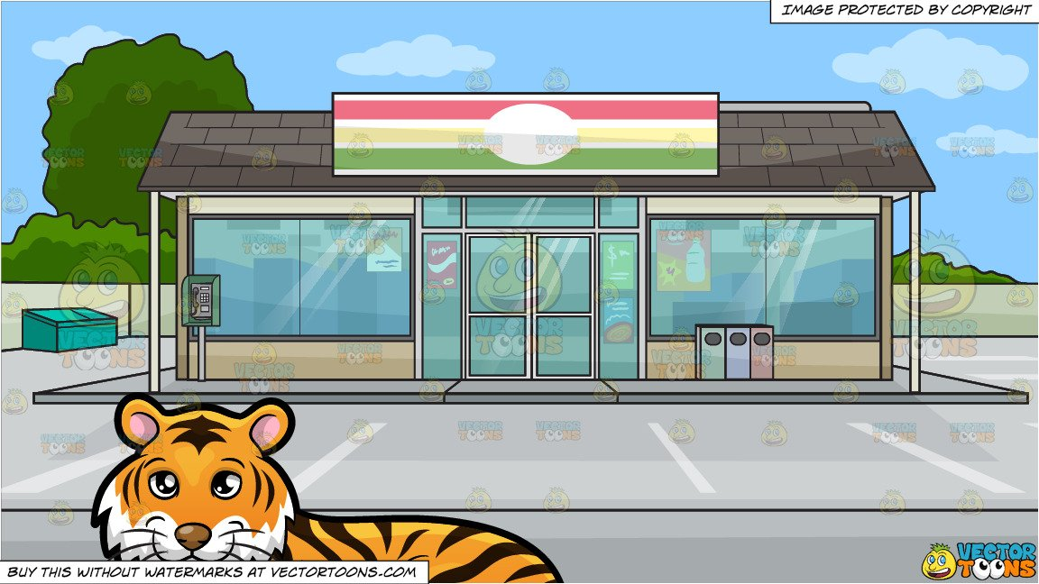 A Beautiful Tiger Lying Down and Outside A Convenience Store Background.