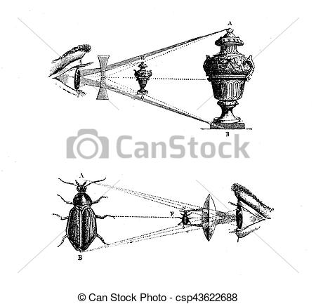 Stock Illustration of concave and convex lens effects, vintage.
