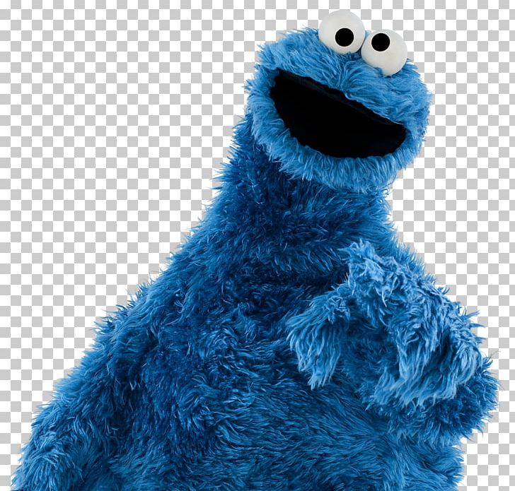 Cookie Monster Ernie Bert Grover Big Bird PNG, Clipart, Bert, Big.