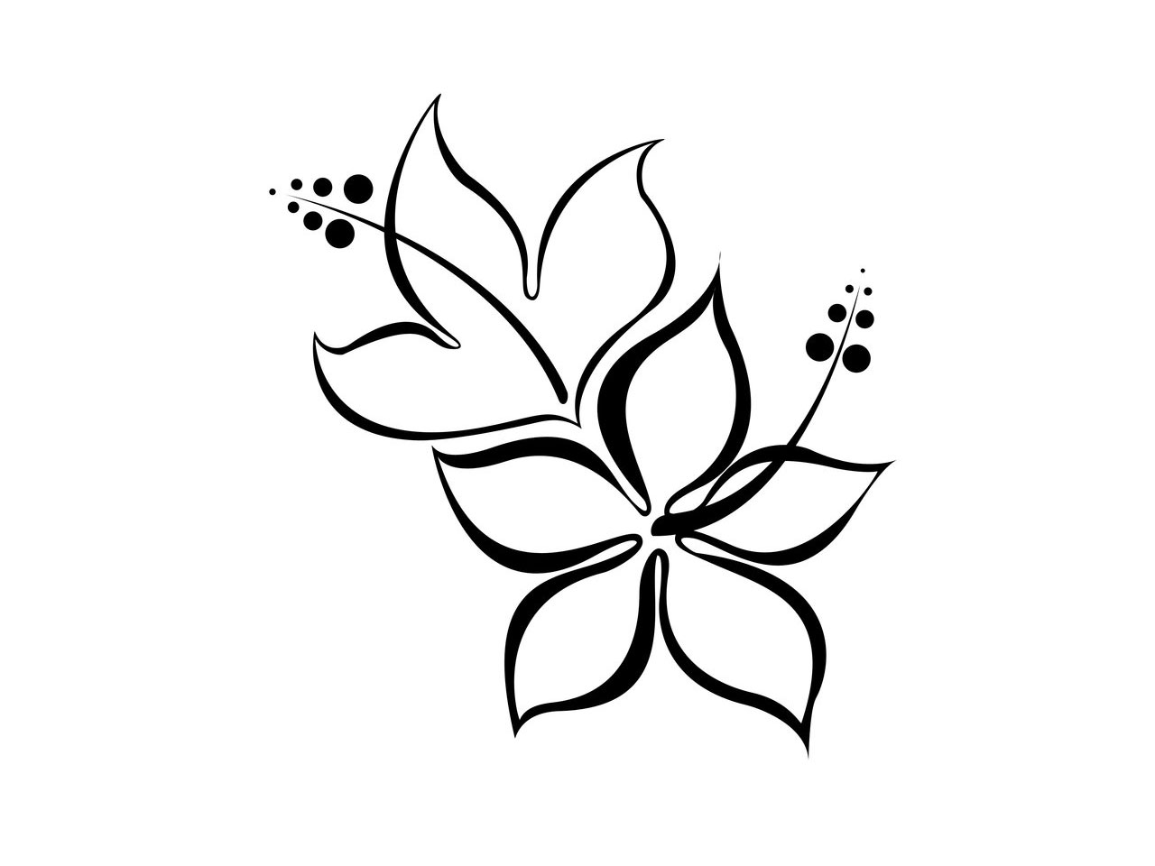 Free Pictures Of Flower Drawings, Download Free Clip Art, Free Clip.