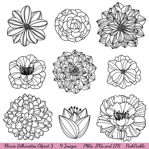Cool flower drawings..