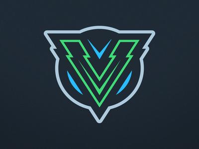 Letter V Logo Design.