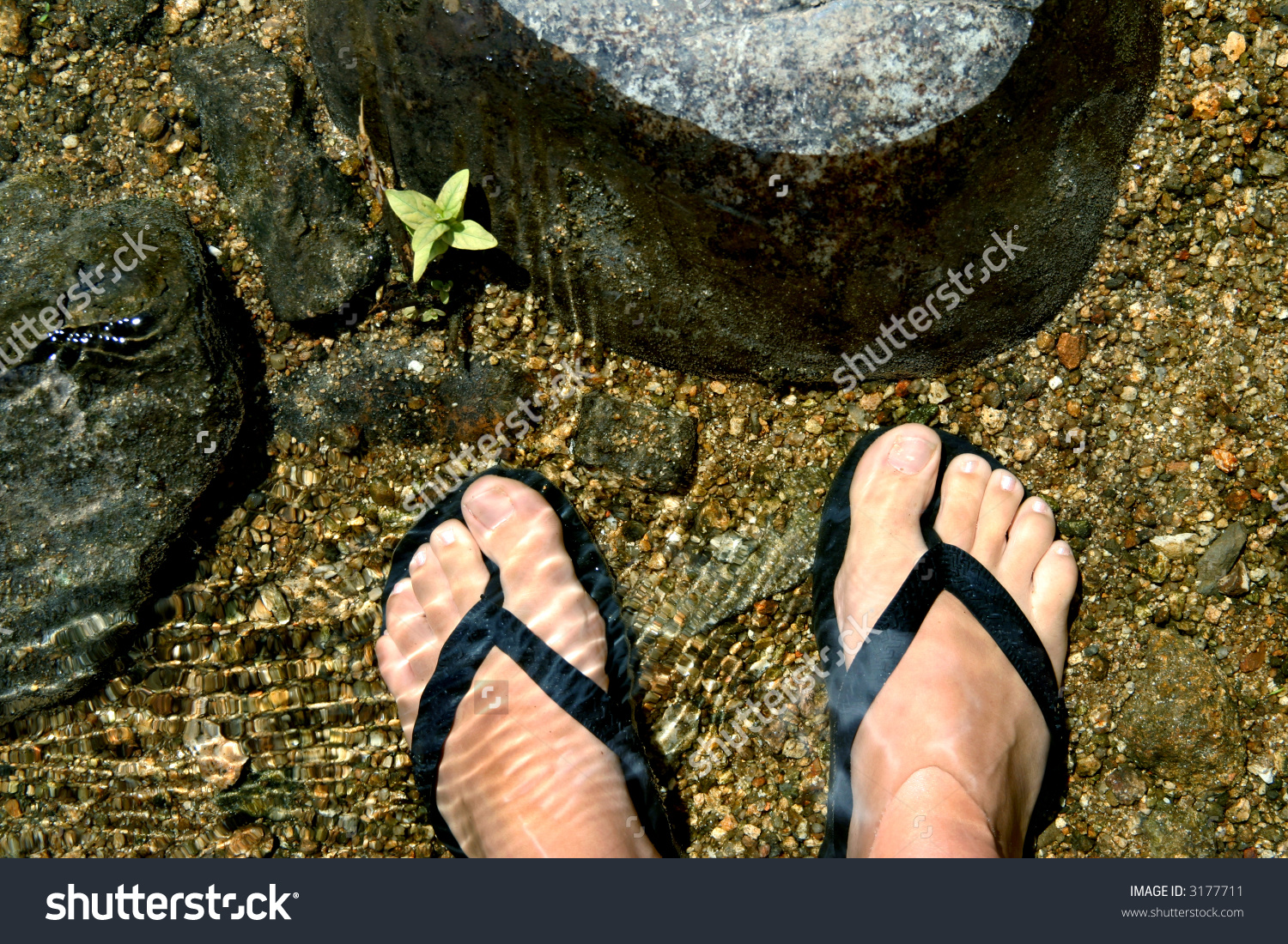 Woman'S Feet With A Pair Of Flip Flops Cooling In Water Stock.