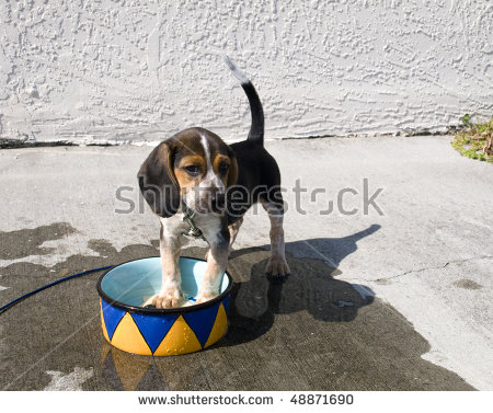 Cooling Off Stock Photos, Royalty.