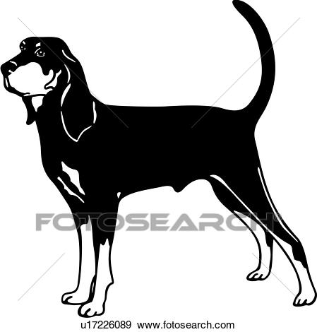 , animal, breeds, canine, coon hound, dog, show dog, Clip Art.