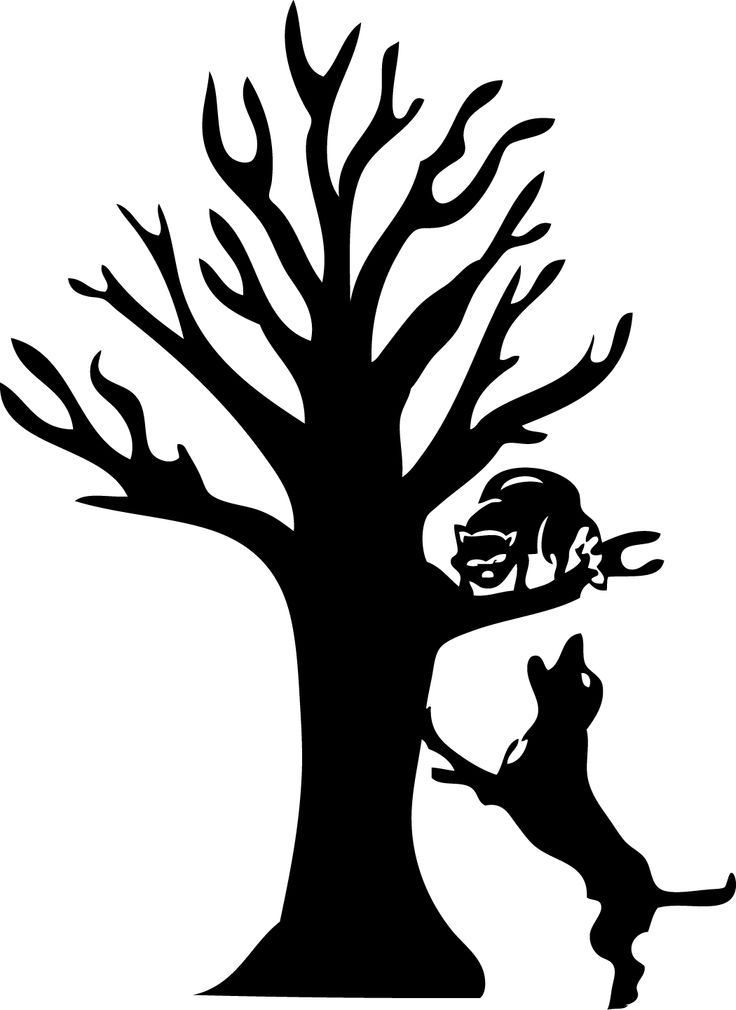 Coonhound Chasing A Raccoon Up A Tree Png & Free Coonhound Chasing A.