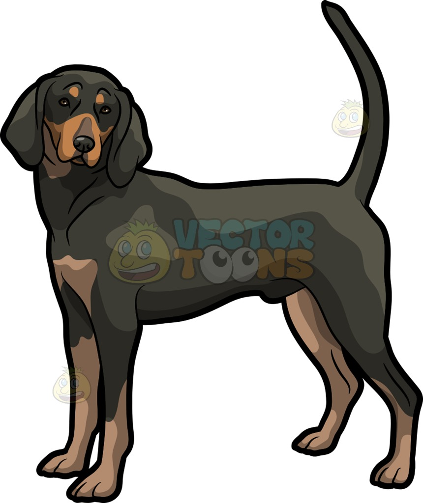A Cute Coonhound Pet Dog Cartoon Clipart.