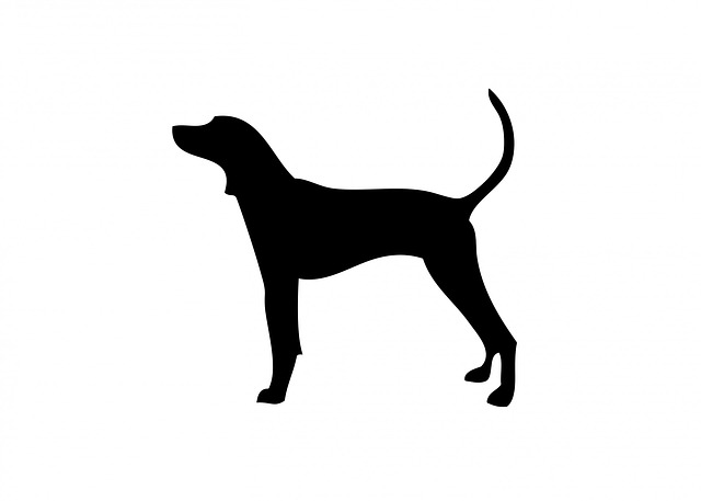 Coonhound marking at tree clipart.
