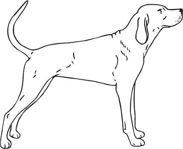 Dog Clip Art Outline Related Keywords & Suggestions.