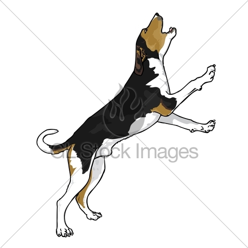 Treeing walker coonhound clipart.