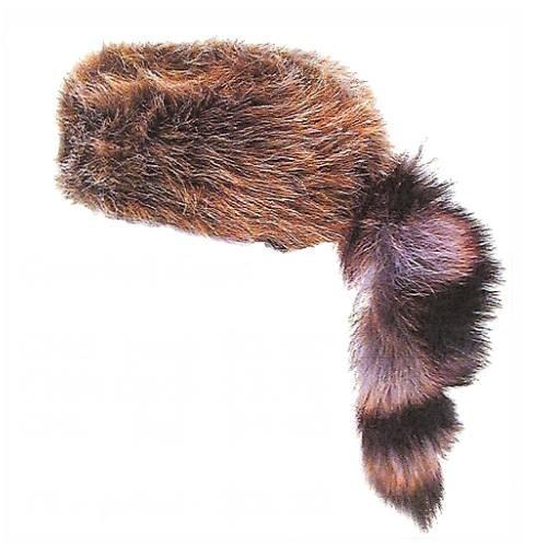 Coonskin Hat Clip Art.