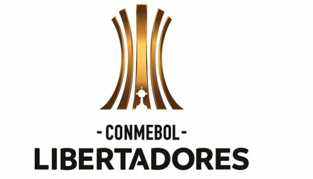 ▻ Copa Libertadores 2019 EN VIVO: programación, resultados y tablas.