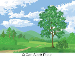 Coppice Illustrations and Stock Art. 216 Coppice illustration.