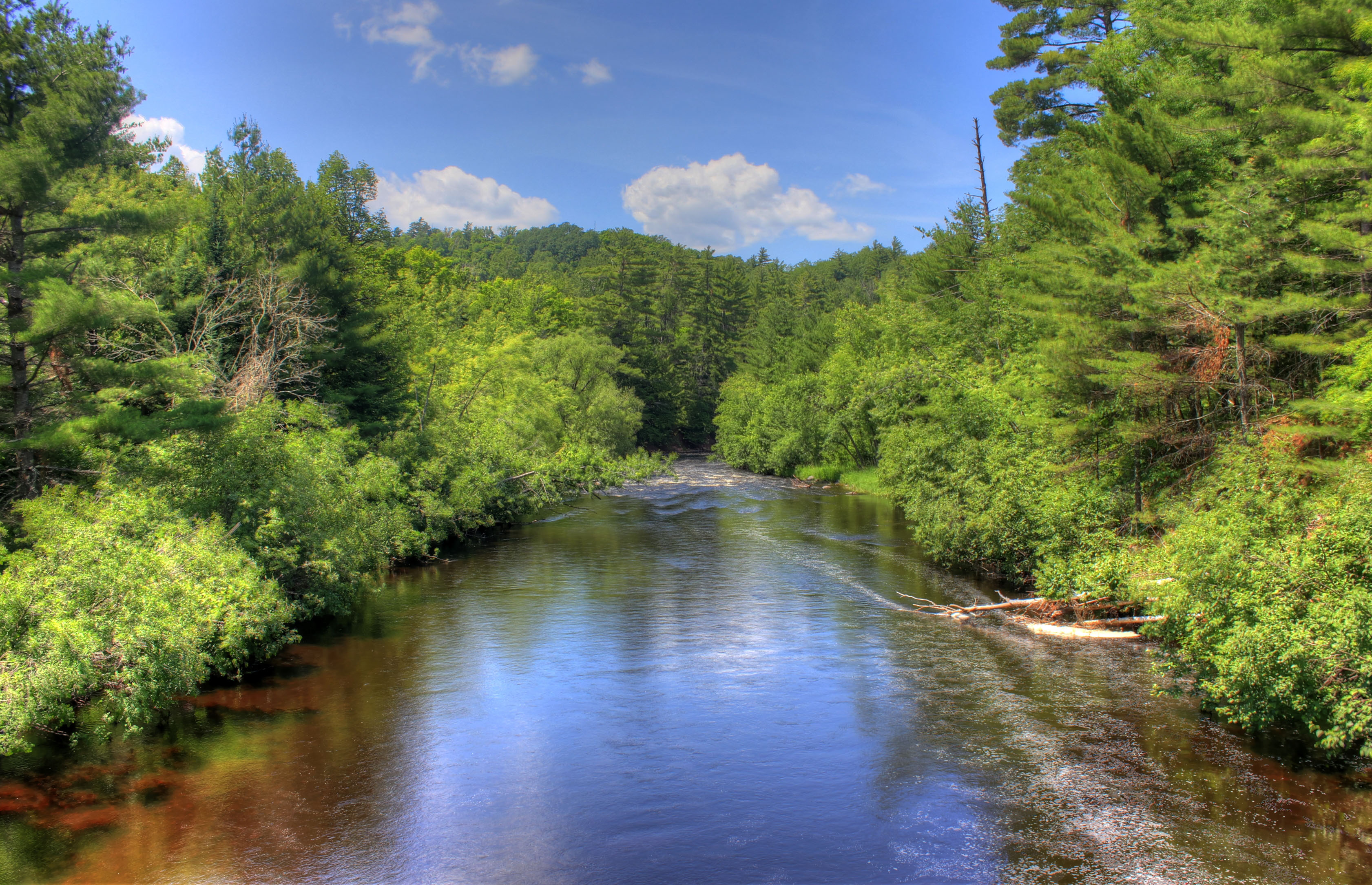 Scenic landscape of the Bad River at Copper Falls State Park.