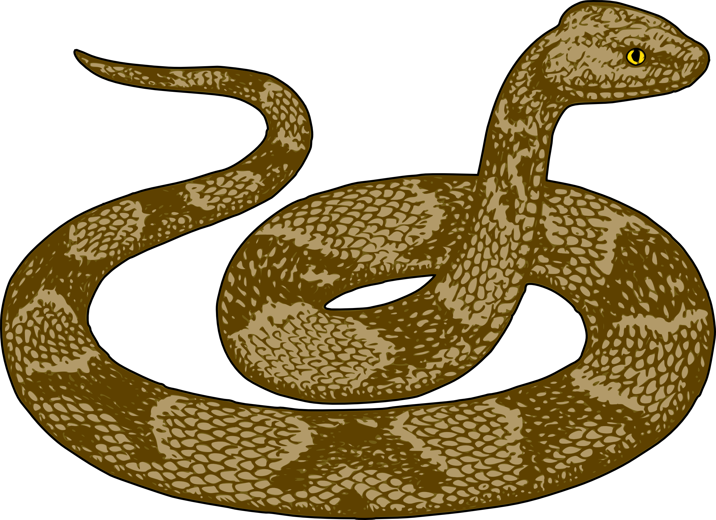 Copperhead snake clipart.