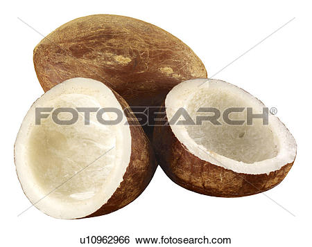 Stock Images of Dried Copra u10962966.