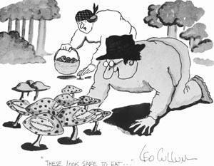 NonCultivated Edible Fungi.
